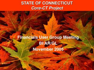 Financials User Group Meeting BI/AR/GL November 2005