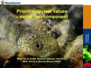 Prioritising river values    native fish component          Mike Joy  Amber McEwan Massey University Alton Perrie  Murra