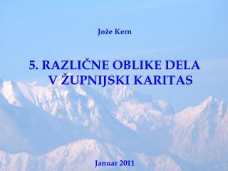 Jože Kern 5. RAZLIČNE OBLIKE DELA V ŽUPNIJSKI KARITAS Januar 2011
