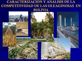 CARACTERIZACI�N Y AN�LISIS DE LA COMPETITIVIDAD DE LAS OLEAGINOSAS  EN BOLIVIA