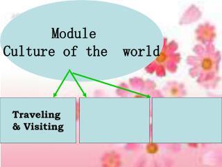 Module   Culture of the  world