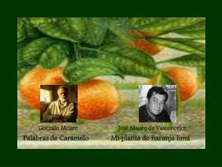 Gonzalo Moure Jos� Mauro de Vasconcelos Palabras de Caramelo            Mi planta de naranja lima