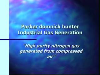 Parker  domnick  hunter  Industrial Gas Generation