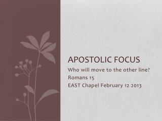 Apostolic Focus