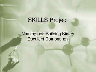 SKILLS Project