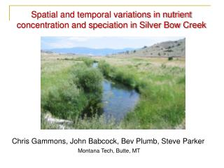 Spatial and temporal variations in nutrient concentration and speciation in Silver Bow Creek