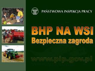 pip.pl