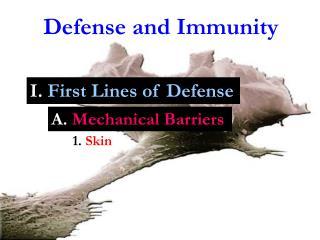 Defense and Immunity