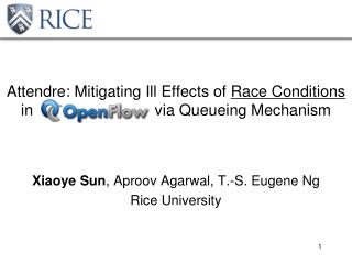 Xiaoye Sun ,  Aproov Agarwal , T.-S. Eugene Ng Rice University