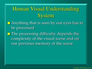 Human Visual Understanding System