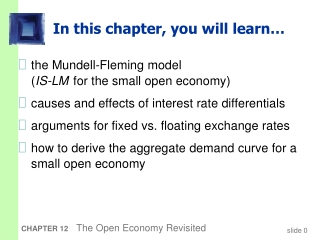 Chapter 13: Economic Policy in an Open Economy