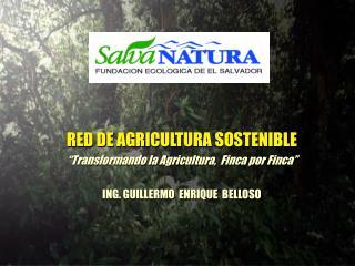 """RED DE AGRICULTURA SOSTENIBLE """"Transformando la Agricultura,  Finca por Finca"""""""