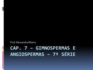 Cap. 7 – Gimnospermas e Angiospermas – 7ª série
