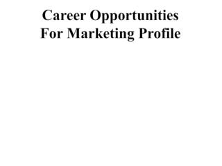 Career Opportunities  For Marketing Profile