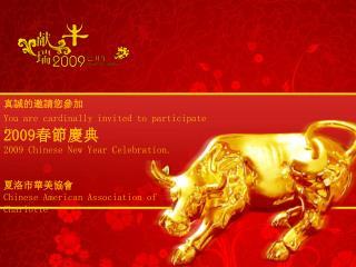 2009 春 節慶典 2009  Chinese  New Year Celebration.