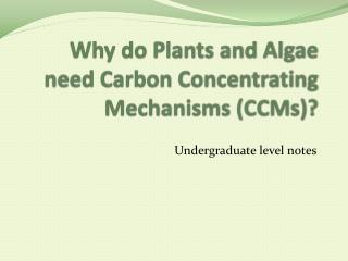 Why do Plants and Algae need Carbon Concentrating Mechanisms (CCMs)?