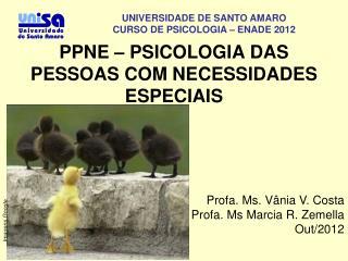 PPNE – PSICOLOGIA DAS PESSOAS COM NECESSIDADES ESPECIAIS