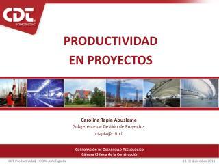 Productividad En proyectos