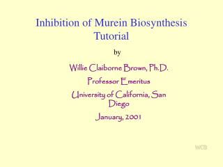 Inhibition of Murein Biosynthesis Tutorial