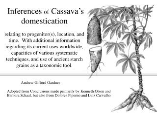 Inferences of Cassava s domestication  relating to progenitors, location, and time.  With additional information regardi