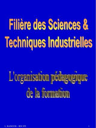 Filière des Sciences & Techniques Industrielles