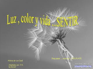 Luz , color y vida ...SENTIR