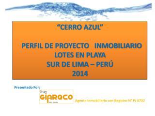 """""""CERRO AZUL""""   PERFIL DE PROYECTO   INMOBILIARIO  LOTES EN PLAYA  SUR DE LIMA – PERÚ 2014"""
