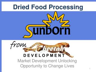 Dried Food Processing