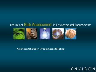 The role of  Risk Assessment  in Environmental Assessments
