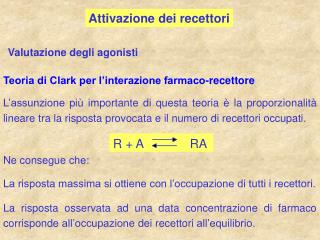 Attivazione dei recettori