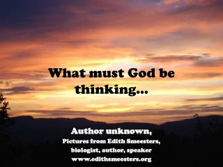 What must God be thinking…