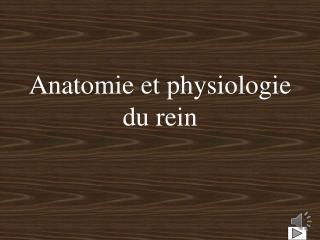Anatomie et physiologie du rein