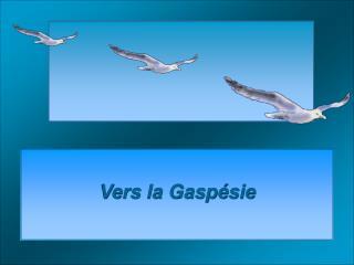 Vers la Gaspésie