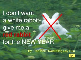 I don�t want a white rabbit-  give me a red rabbit for the NEW YEAR