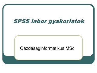 SPSS labor gyakorlatok