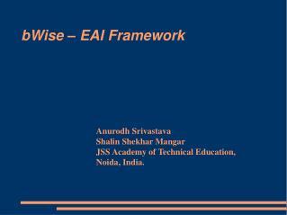 BWise   EAI Framework