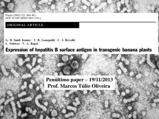 Penúltimo  paper – 19/11/2013 Prof. Marcos  Túlio  Oliveira