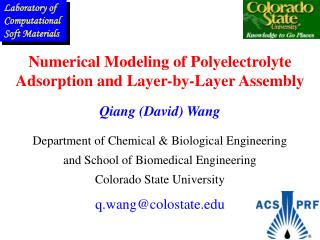 Numerical Modeling of Polyelectrolyte Adsorption and Layer-by-Layer Assembly