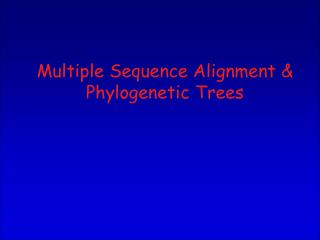 Multiple Sequence Alignment & Phylogenetic Trees