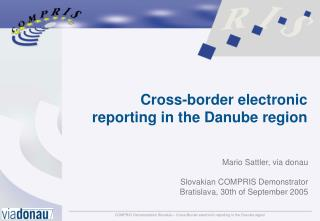 Cross-border electronic reporting in the Danube region
