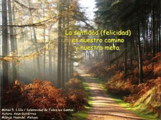La santidad (felicidad) es nuestro camino y nuestra meta.