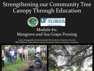 Strengthening our Community Tree Canopy Through Education  Module #11: