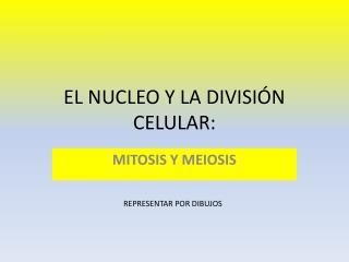 EL NUCLEO Y LA DIVISIÓN CELULAR: