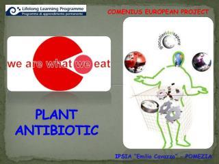 PLANT  ANTIBIOTIC