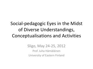 Social-pedagogic Eyes in the Midst of Diverse Understandings, Conceptualisations and Activities