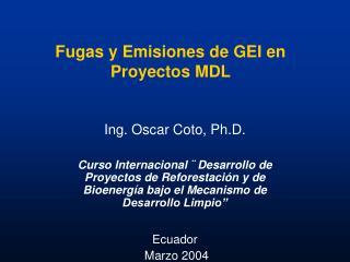 Fugas y Emisiones de GEI en Proyectos MDL