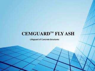 CEMGUARD TM FLY ASH