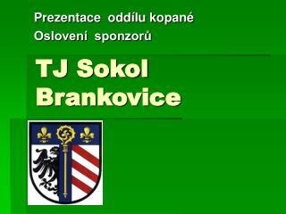 TJ Sokol Brankovice