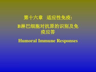 第十六章   适应性免疫 : B 淋巴细胞对抗原的识别及免疫应答 Humoral Immune Responses