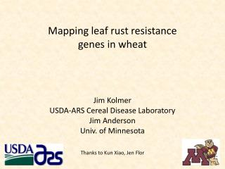 Mapping leaf rust resistance  genes in wheat
